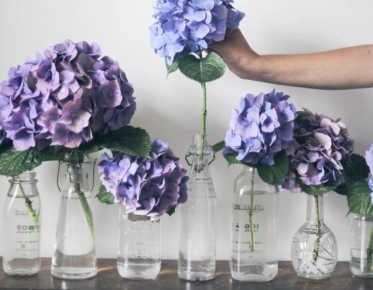 çiçek dekorasyonları