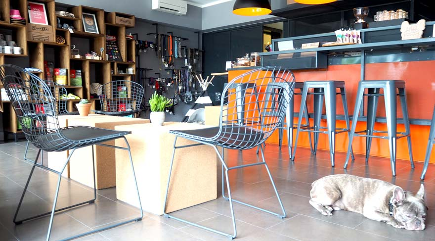 Wuufbox Cafe