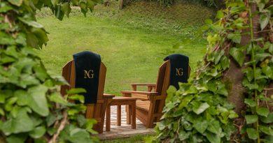 Doğayla İç İçe: Orman Terapisi (Forest Bathing)